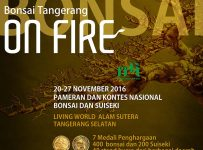 pameran-bonsai-tangerang-on-fire-mall-living-world-alam-sutera-20-27-november-20161