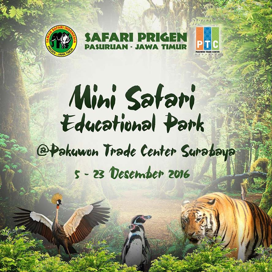 Mini Safari Educational Park - Pakuwon Trade Center Surabaya, 5 - 23 Desember 2016